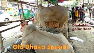 187 | ফিরে দেখা ২০১৮ | Bulls And Buffalo Collection | Old Dhaka Special | Dholaikhal | ZbGH 2019