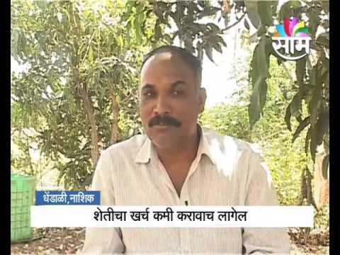 Nashik based Rajesh Kamankar s zero budget natural pomegranate farming