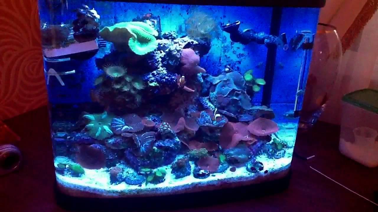 Resun aquarium fish tank - Resun Aquarium Fish Tank