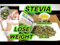 Stevia for Weight Loss | Stevia - Lose Weight Fast Hindi | Stevia Health Benefits | Sugar Substitute