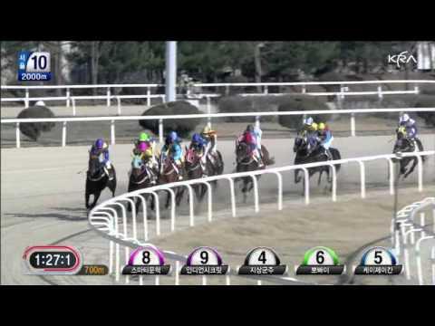 Smarty Moonhak (Seoul Race 10), April 7, 2012