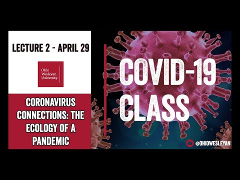 Coronavirus Connections: The Ecology Of A Pandemic