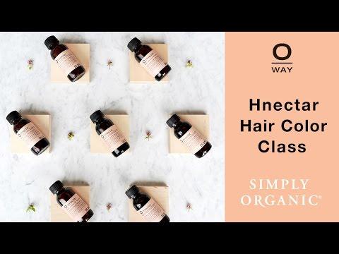 Oway Hnectar Holistic Hair Color Training