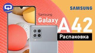 Samsung Galaxy A42 - Первое мнение. Краткий обзор/ QUKE.RU /