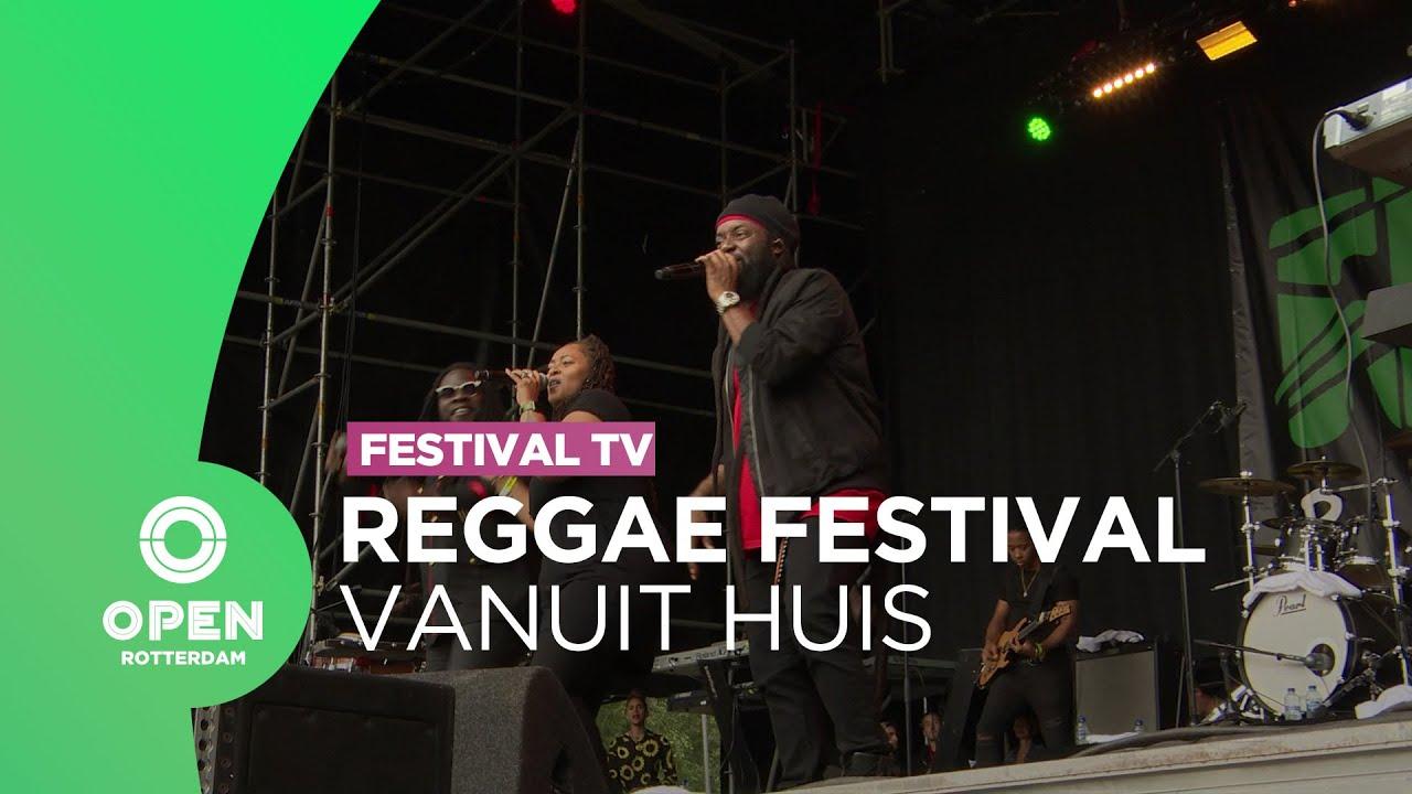 Reggae Festival Rotterdam   FESTIVAL TV