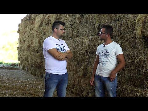 MADE IN ALBANIA PUNTATA 13 DATA 30 GUSHT