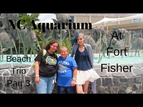 The NC Aquarium At Fort Fisher // Beach Trip: Part 3 // Last Day Of Our Family Vaction