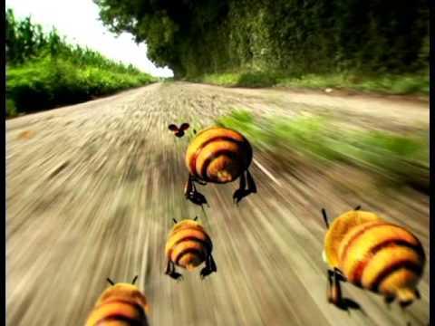 Насекомые Божья коровка и пчелы  Слишком шустрый