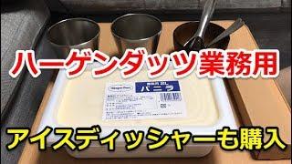 【業務用】ハーゲンダッツ2L(バニラ)とアイスディッシャー+サーモスコップ紹介