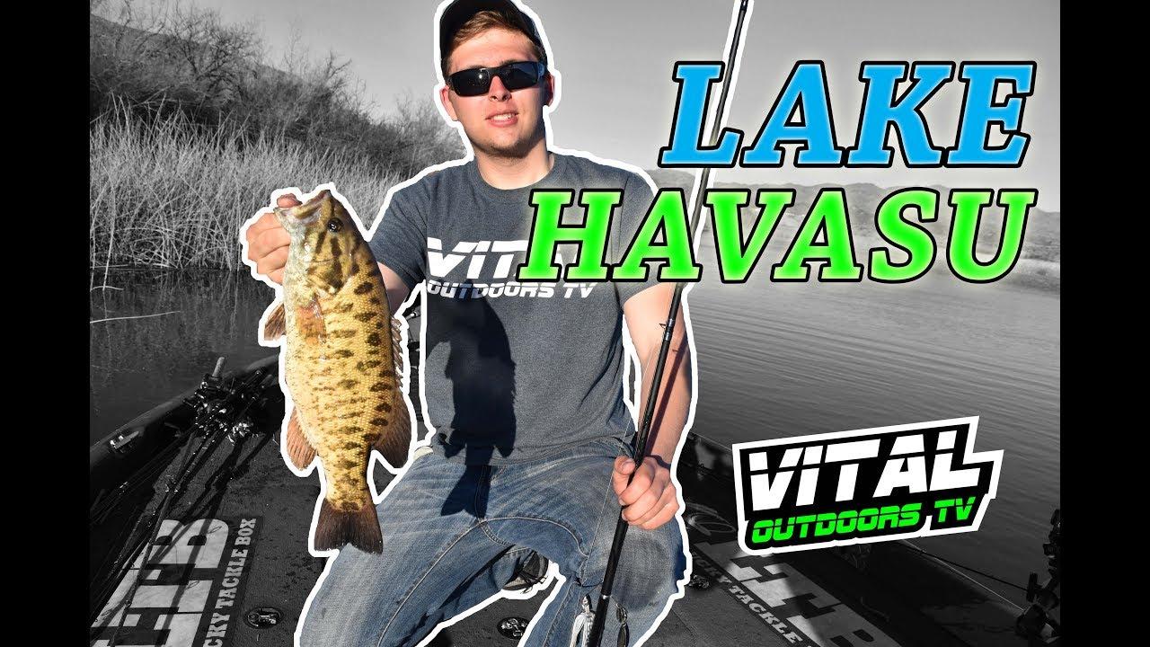 Swimbait Fishing In The Desert Lake Havasu Youtube