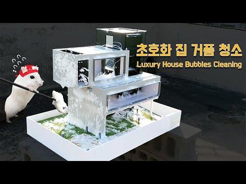 초호화 럭셔리 햄스터집 청소하기/ How to clean a luxury hamster cage