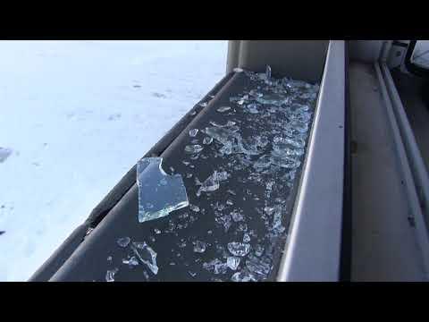 В Оренбурге полицейские задержали мужчину, открывшего стрельбу на базе отдыха