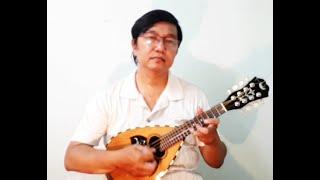TRƯỜNG LÀNG TÔI - Mandolin by Quốc Khánh