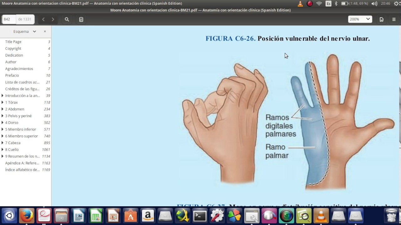 Anatomia y clinica del nervio Cubital - YouTube
