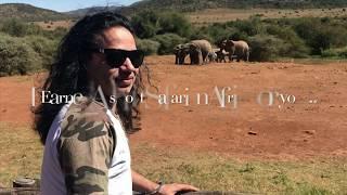 #Vlog #Kailashkher #NewVideo #Safari #Africa