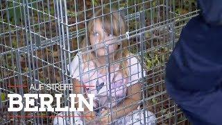 Ausgebüxtes Kind in Falle getappt | Auf Streife - Berlin | SAT.1 TV