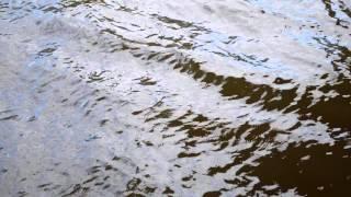 Impressionnisme de l'eau