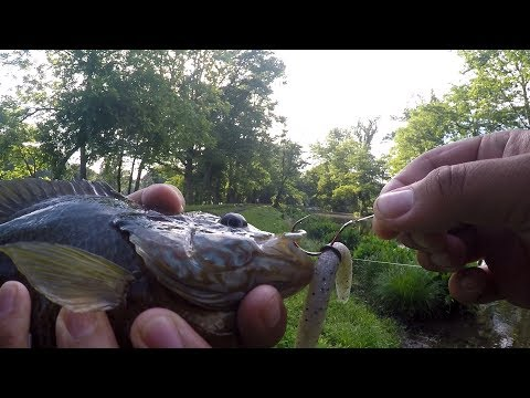 Revisiting a Fishing Spot AFTER 3 YEARS!!! (West Trenton, NJ)