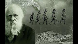 Documentary - The Evolution of the Human Brain