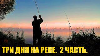 Рыбалка Три Дня на Реке После Окончания Нерестового Запрета Донки Резинка на Хищника 2 ЧАСТЬ