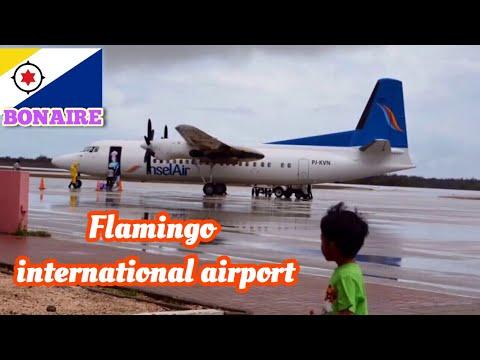 「Bonaire, Caribbean」Flamingo international airport