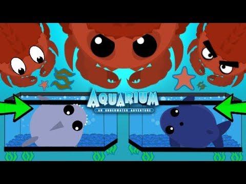 Mopeio KING CRAB AQUARIUM TRAP TROLL NEW TROLLING TRAPPING OCEAN ANIMALS Mope IO Mopeio Gameplay