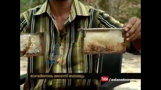 Heavy drought in Kerala : Honey Bee Farmers under crisis #Drought