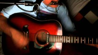 Ring aus Feuer ~ Wolfgang Ambros ~ Cover ~ Framus Texan & Bluesharp (Ring of Fire - June Carter)