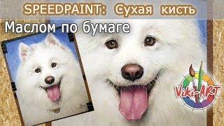 Мастер-класс. Как нарисовать собаку маслом на бумаге. Сухая кисть. Быстрое рисование. StudioVikiART