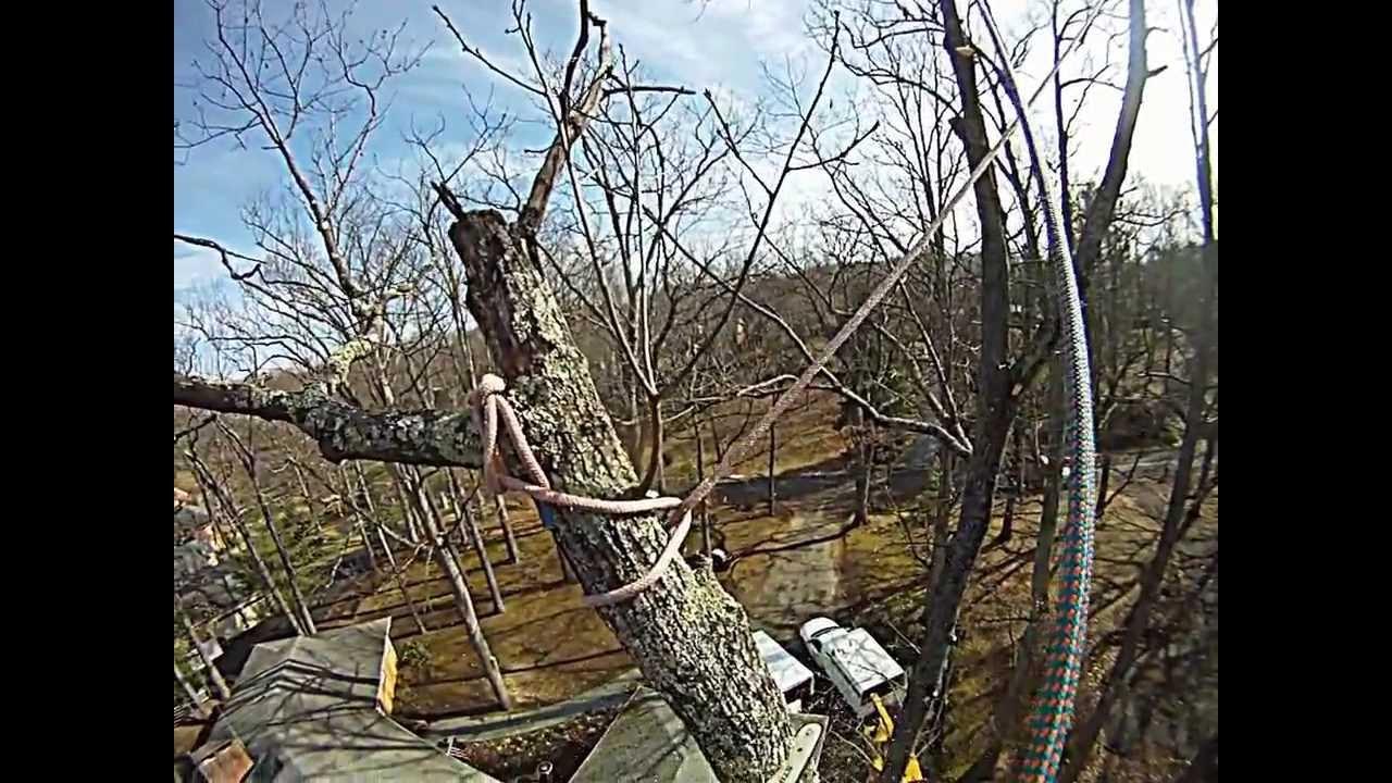 Pendulum Rigging Extreme Tree Company Youtube