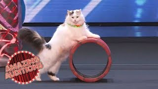 America's Got Talent 2018 -  Funniest / Weirdest / Worst Auditions - Part 1 MP3