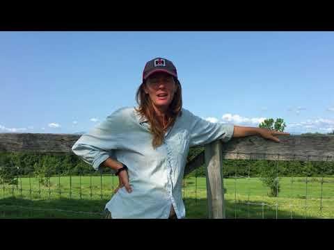 WWOOF-USA // BIODYNAMIC FARMING IN UPSTATE NEW YORK