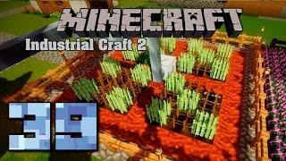Minecraft Industrial Craft 2 39 Селекция. Резиновый тростник
