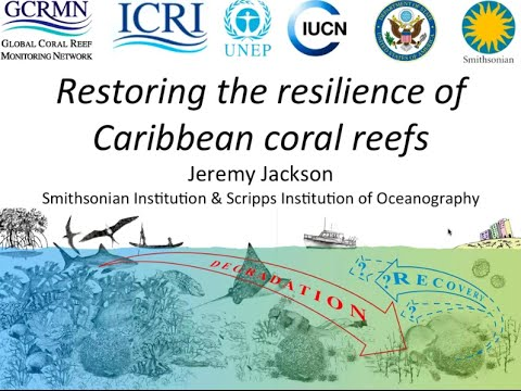 Restoring the Resilience of Caribbean Coral Reefs