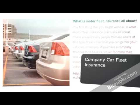 Motor fleet insurance: what you need to know