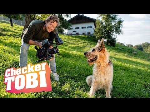 Der Filmtier-Check | Reportage für Kinder | Checker Tobi