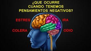 ¿Que ocurre cuando tenemos pensamientos negativos? - Abre Tus Ojos