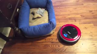 Infinuvo Hovo 710 Red Pet Series Robot Vacuum Instructional Review