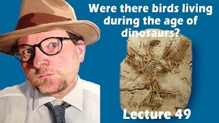 Were there birds living during the age of dinosaurs?