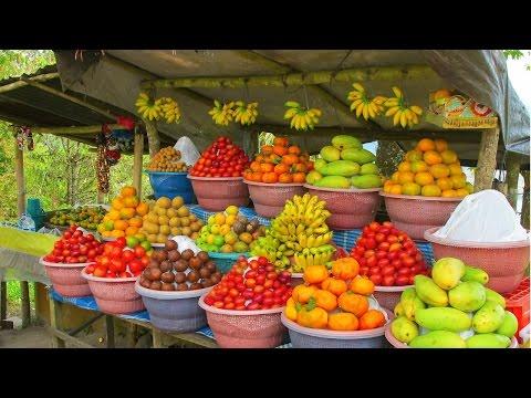 Curso Produção Comercial de Frutas em Pequenas Áreas - Nutrição e Adubação