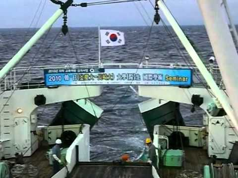 Trawling Demo on KAYA Training Vessel