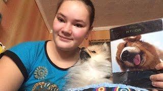 Как уговорить родителей купить собаку#2 Тетрадь!!!