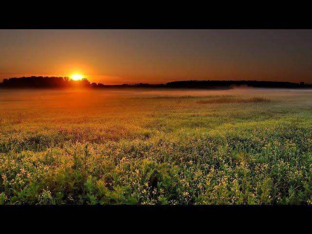 Изображение предпросмотра прочтения – СветланаБоряева читает произведение «Весенний вечер» И.С.Тургенева