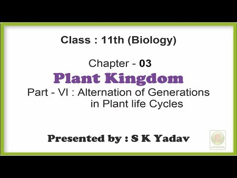 Ch 3 Plant Kingdom Part 6 Alternation of Generations in Plant Life Cycles  Class 11th Biology