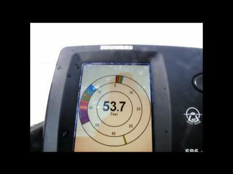 Reading a flasher or ice fishing sonar