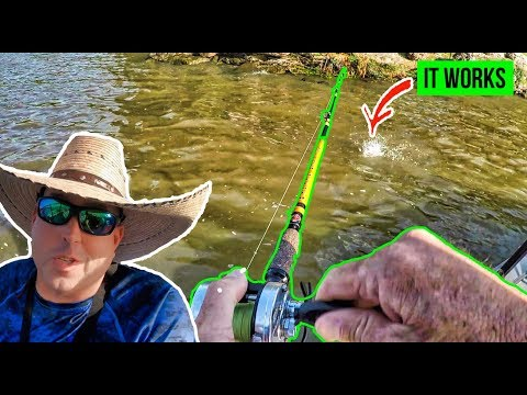 How To Catch TONS Of Catfish FAST (So Easy)