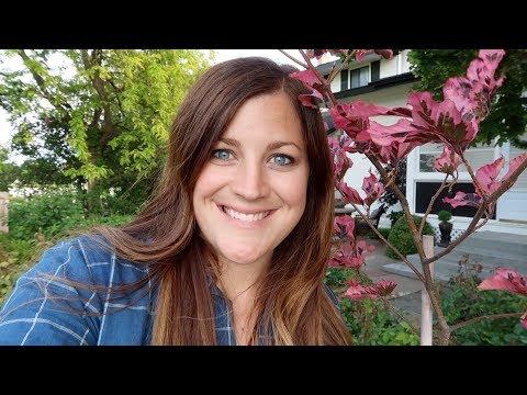 Planting City Pots | Vegetable Garden Tour | Tri Color Beech Tree 🌸🥦🌳// Garden Answer