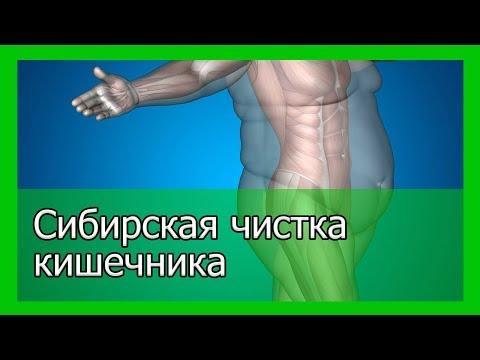 Сибирская чистка кишечника   старинный рецепт сибирских знахарей