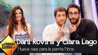 Dani Rovira le consigue una nueva casa a la perrita Nona - El Hormiguero 3.0