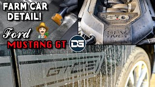 Deep Cleaning a DIRTY Ford Mustang GT...Farm Car?! | INSANE Detailing Transformation!